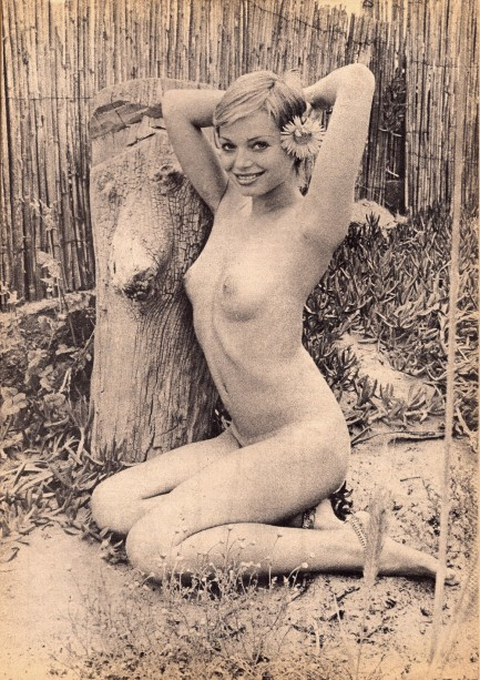 Nude phyliss diller porn pictures, girl gets nude public humiliation